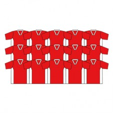 Nyda Shirt Team Kit - Set 15 with Numbers
