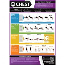Anatomical Chart - Chest