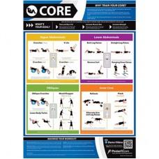 Anatomical Chart - Core
