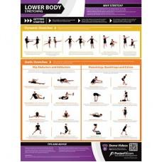 Lower Body Stretching Chart