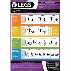 Anatomical Chart - Legs