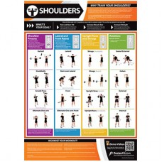 Anatomical Chart - Shoulders