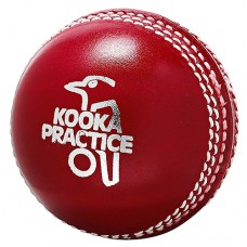 Kookaburra Practice leather 2 piece cricket ball 156g