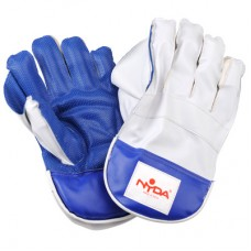Wicket Keeper Gloves School Model Senior
