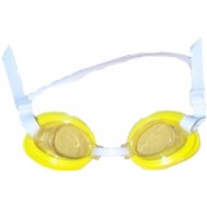 Budget Quality Goggles