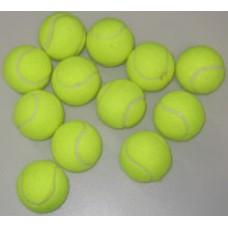 Coaching Tennis Balls (1 Doz.)