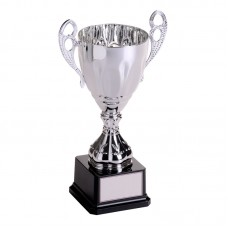 Economy Perpetual Cup Silver 29cm