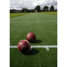 Portable Cricket Pitch- Deluxe