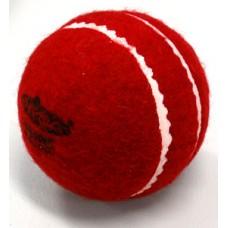 Furball Cricket Trainer